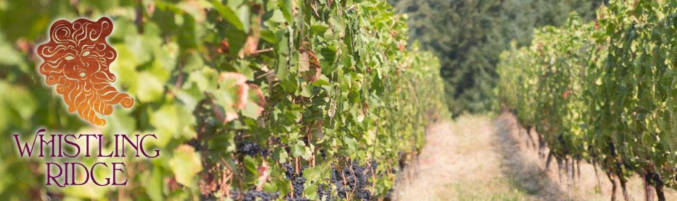 vinyard-whistling-ridge-newberg